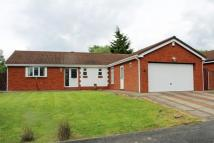Bungalow for sale in Barberry Close...