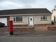 2 bed Detached Bungalow to rent in Hawthorn Square...