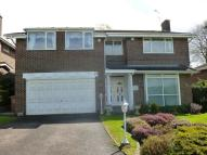 Detached house to rent in Green Lane, Watford, WD19