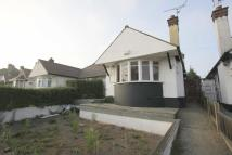 Semi-Detached Bungalow to rent in Ambleside Drive...