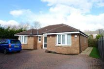3 bedroom Bungalow in FAREHAM - FAREHAM PARK...