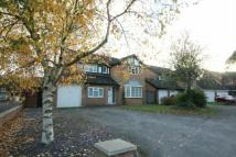 4 bed property to rent in FOUR BED - WEST END -...