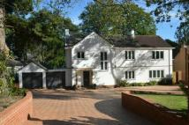 4 bed house to rent in PINE WALK - CHILWORTH -...