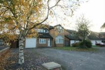 property to rent in FOUR BED - WEST END -...