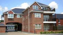 3 bed Apartment in Crichton Court