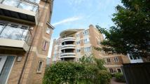 Branagh Apartment to rent
