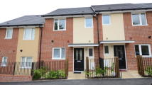 House Share in Tay Road