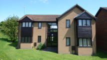 Studio apartment in Ashmere Close