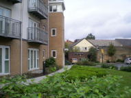 Shadwell Apartment to rent