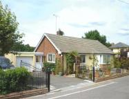 Detached Bungalow in Springfield Road...