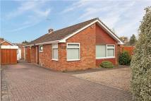 Bungalow for sale in Ruscombe Lane, Ruscombe...