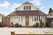 4 bedroom Detached house in Woodwaye, Woodley...