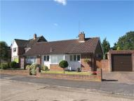 Beverley Gardens Bungalow to rent