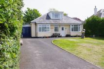 4 bedroom Detached Bungalow for sale in West Bay Road, Bridport