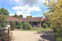 Detached Bungalow for sale in The Paddock...