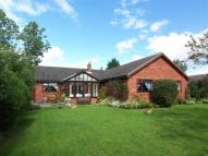 5 bed Detached Bungalow in Pinetree Grove...