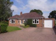 Detached Bungalow for sale in The Wayside, Hurworth...