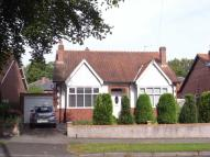 Detached Bungalow in Coniscliffe Road...