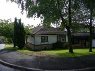 3 bed Detached Bungalow in Bryn Onnen, Pontardawe...