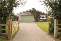 Bungalow in Nailsea, North Somerset...
