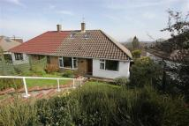 3 bedroom Semi-Detached Bungalow in Portishead...