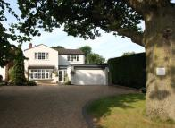 4 bedroom Detached house for sale in The Oak, Park Drive...