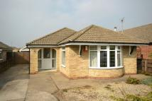 Detached Bungalow in Mayfair Court...