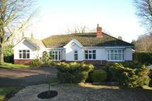 4 bed Detached Bungalow in Ferriby Lane, Scartho...