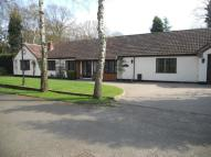 4 bedroom Detached Bungalow to rent in Vale Avenue, Bourne Vale...