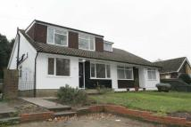 4 bedroom Semi-Detached Bungalow to rent in Downs Road, Istead Rise...