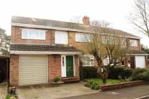 Poplar Walk semi detached property for sale