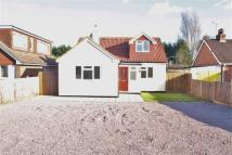 5 bed Detached Bungalow in Station Road, Edenbridge