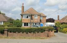 3 bedroom Detached home for sale in Church Lane, WESTFIELD...