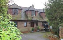 4 bed Detached property for sale in Langham Road...