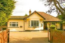 Detached Bungalow in Sewardstone Road...
