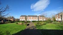 Apartment to rent in St Lukes Square Guildford