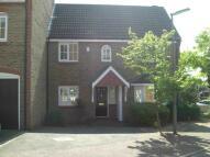 Bassett house to rent