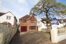 Detached property in New Church Road, Hove...