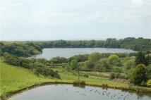 Land in Park Farm, Lake, Ponds for sale