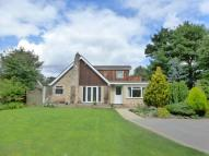 4 bed Detached Bungalow for sale in Church Lane...