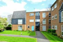 Ground Flat for sale in Dedworth Road Windsor