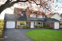 Detached house for sale in Hough Green, Chester