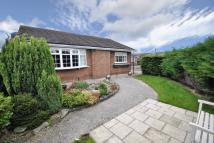 Bungalow for sale in Maple Close, Wrexham