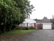 Shelsley Drive Bungalow to rent