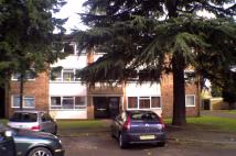 Ground Flat to rent in Moor Green Lane, Moseley...