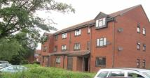 Flat to rent in Bolton Road, Small Heath...