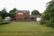 Detached property for sale in Walter Street...