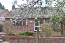 South Close Detached Bungalow to rent
