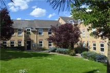 Cambridge Court Flat to rent