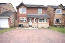 Detached property to rent in Ashburgh Parc...